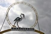 亞馬遜生態休閒農莊賞鳥:007.JPG