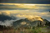 上山露營:DSC_4235.jpg