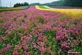 2014北海道:DSC_1793.jpg