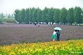 2014北海道:DSC_1808.jpg