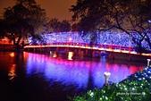 台中國家歌劇院-台中市夜景:DSC_5450-s.jpg