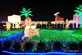 2015台灣燈會:DSCF7436.jpg
