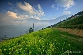 上山露營:DSC_6549.jpg