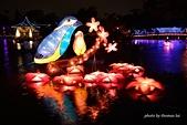 2015台灣燈會:DSC_5550.jpg
