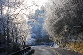 2013太平‧雪季:DSC_0758.JPG