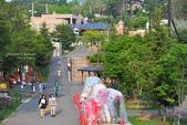 2014夏の北海道-旭山動物園、旭川:DSC_4184.JPG