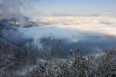2013太平‧雪季:DSC_0787.JPG