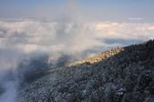 2013太平‧雪季:DSC_0790.JPG