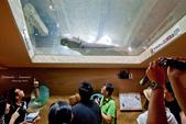 2014夏の北海道-旭山動物園、旭川:DSC_3805-1.jpg