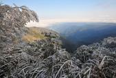 2013太平‧雪季:DSC_0816.JPG