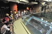 2014夏の北海道-旭山動物園、旭川:DSC_3748.JPG
