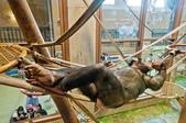 2014夏の北海道-旭山動物園、旭川:DSC_3945-1.jpg