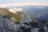 2013太平‧雪季:DSC_0858.JPG