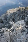 2013太平‧雪季:DSC_0875.JPG
