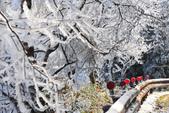 2013太平‧雪季:DSC_0878.JPG