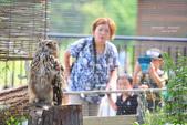 2014夏の北海道-旭山動物園、旭川:DSC_3907.JPG