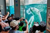 2014夏の北海道-旭山動物園、旭川:DSC_3624-1.jpg