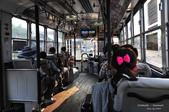 2014夏の北海道-旭山動物園、旭川:DSC_4191.JPG