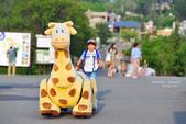 2014夏の北海道-旭山動物園、旭川:DSC_4189.JPG