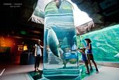 2014夏の北海道-旭山動物園、旭川:DSC_4137-1.jpg