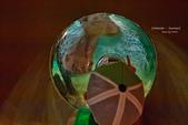 2014夏の北海道-旭山動物園、旭川:DSC_3793-1.jpg
