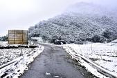 2018.2.4南山-思源埡口-福壽山農場:TWO_3283_006.jpg
