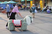 2014夏の北海道-旭山動物園、旭川:DSC_4185.JPG