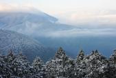 2013太平‧雪季:DSC_0731.JPG