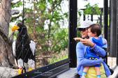 2014夏の北海道-旭山動物園、旭川:DSC_3917.JPG