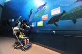 2014夏の北海道-旭山動物園、旭川:DSC_3570.JPG