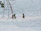 2009.02 柬埔寨吳哥之旅:皇家浴池2.JPG