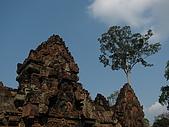2009.02 柬埔寨吳哥之旅:IMG_0961.JPG
