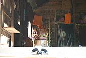 2009.02 柬埔寨吳哥之旅:IMG_0568.JPG