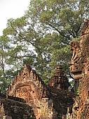2009.02 柬埔寨吳哥之旅:IMG_0973.JPG