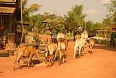 2009.02 柬埔寨吳哥之旅:IMG_0522.JPG