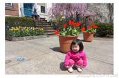 2013 Spring:P1000607.JPG