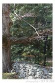 2012 秋季剪輯II - Topsmead State Forest:DSC_6892.jpg