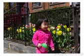 2013 Spring:P1000611.JPG