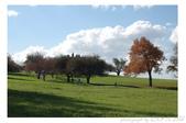 2012 秋季剪輯II - Topsmead State Forest:DSC_6893.jpg
