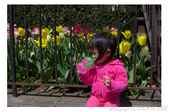 2013 Spring:P1000615.JPG