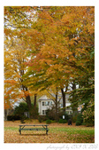 2012 秋季剪輯IV - Halloween Decoration in Essex:P1060401_M.jpg