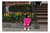 2013 Spring:P1000616.JPG