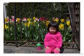 2013 Spring:P1000617.JPG