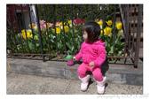 2013 Spring:P1000618.JPG