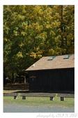 2012 秋季剪輯V - Wadsworth Falls State Park:DSC_6868.jpg