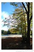 2012 秋季剪輯V - Wadsworth Falls State Park:DSC_6875.jpg