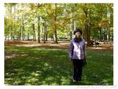 2012 秋季剪輯V - Wadsworth Falls State Park:P1020363.JPG