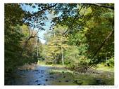 2012 秋季剪輯V - Wadsworth Falls State Park:P1020372.JPG