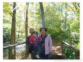 2012 秋季剪輯V - Wadsworth Falls State Park:P1020377.JPG