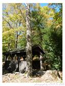 2012 秋季剪輯V - Wadsworth Falls State Park:P1020426.JPG